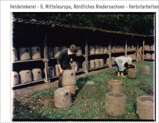 Downloads Bücher Filme Imkerei - Heideimkerei / Korbimkerei der Familie Klindworth aus den Jahren 1983 - 1986
