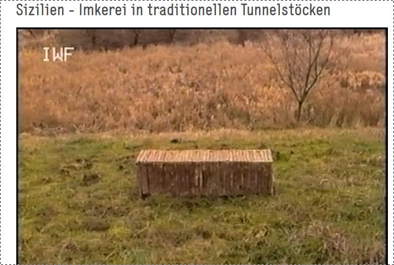 Downloads Bücher Filme Imkerei - Sizilianische Imkerei in Tunnelstöcken